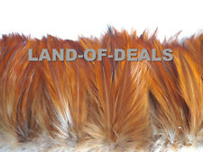 Rooster hackle feathers strung brown / natural red bulk wholesale feathers real