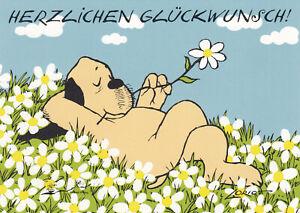 Postkarte: Loriot - Hund / Wim in der Wiese / Herzlichen Glückwunsch