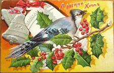 Bluejay/Blue Jay 1910 Christmas Postcard, Silver-Embossed Color Litho - Bird