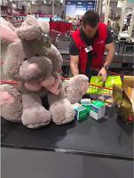 Forever Friends Grey pink Bunny Rabbit Soft / Plush Toy 70cm/90cm