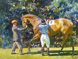 VINTAGE JOCKEY EQUESTRIAN HORSE RACING *CANVAS* ART