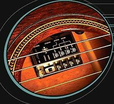 LR Baggs iMix Dual Pickups for Nylon Guitar w/IBeam, Element, Preamp, Mixer, EQ