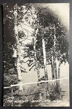 The Birches Bear Lake Michigan RPPC 1946