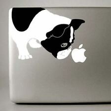 French Bulldog Large B&W Decal by artist Ivy Bee- NEW FREE SHIPPING ASAP