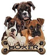 TEE SHIRT - BOXER #9 - DOG - CUTE BOXER PUPS