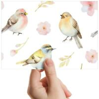 "Beautiful Watercolor Birds - Small Photograph 6"" x 4"" Art Print Photo Gift #8181"
