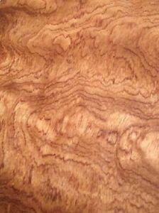 Rosenholz Furnier Bubinga Pommele Maser burl 1F 131x30cm 2 Bl