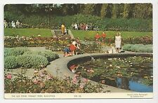 Postcard, Saidman Bros, KBL 142, The Lily Pond, Stanley Park, Blackpool 1970