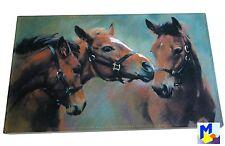 Akzente Gallery Matte *3 Pferde* Vlies bedruckt 44x67 cm waschbar NEU