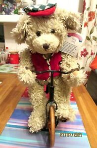 """Special Collectors Edition Bike Riding 16"""" Tall Plush Bear"""