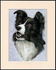 BORDER COLLIE SHEPHERD /& SHEEP LOVELY LITTLE DOG PRINT READY MOUNTED
