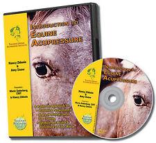 "Introduction to Equine Acupressure 55"" Training Dvd - Animalacupressure.com"