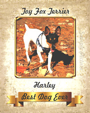 """Toy Fox Terrier Harley Dog Personalize Wall Art Home Decor 8""""x10"""" Photo"""