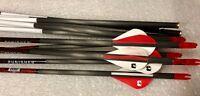 8920 Barnett 10100 Bloodsport Punisher Arrows 12 Pack 350 /.006 / 7.9