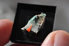 Mojaveite & Timroseite - Bird Nest drift, CA, USA - v rare minerals, type loc