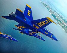 US NAVY BLUE ANGELS BEHIND CROWD LINE PENSACOLA 8x10 SILVER HALIDE PHOTO PRINT
