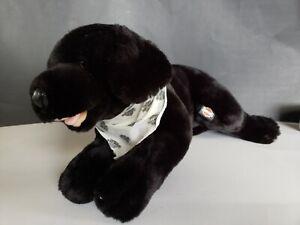 Harley Davidson Plush Black Dog 2004 Plushie Stuffed Animal Leather Nose Toy