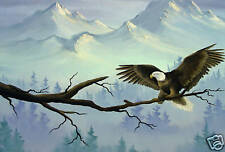 EAGLE LANDSCAPE PAINTING BOX CANVAS WALL ART mounted A1
