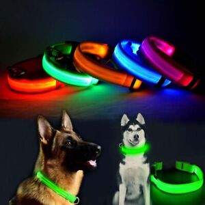 USB Rechargeable LED Dog Pet Collar Flashing Luminous Safety Night Light Up UK