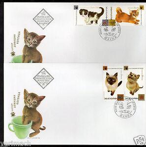 BULGARIA 2013 KITTENS DOMESTIC CATS ANIMALS  2 FDC