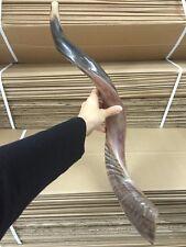 Yemenite Kudu Horn Shofar 24''-28'' New KOSHER Made in Jerusalem ✡From Israel✡