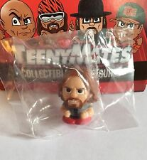 New Teenymates Daniel Bryan WWE YES Figure Wrestling Collectible Map Brie Bella
