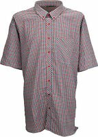 Espionage Check Short Sleeve Button Down Collar Shirt