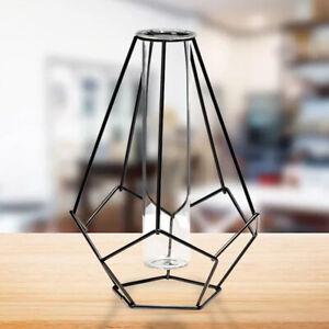 Metal Frame Hydroponic Vase Tube Glass Planter Geometric Tabletop Home Decor