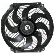 Engine Cooling Fan-Natural Hayden 3700