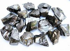 ELITE Shungite Noble stones C60 rough raw 0.5 Lb M size Healing Water US Seller