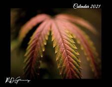 Cannabis Calendar (2021, Calendar)
