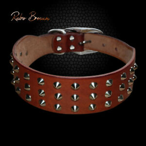 Genuine Leather Dog Studded Collars Adjustable for Large Big Dogs Brown Labrador