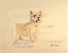 NORWICH TERRIER DOG FINE ART LIMITED EDITION PRINT - Standing on the Stairs