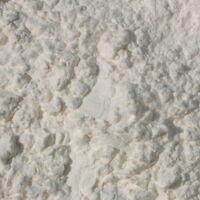 Arrowroot Powder BULK HERBS 1 lb.