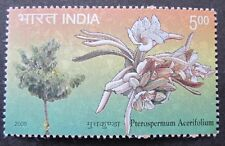 Baum Blüte  Indien 2009