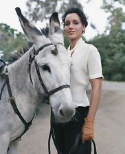 Jennifer Beals UNSIGNED photo - E536 - American actress and a former teen model