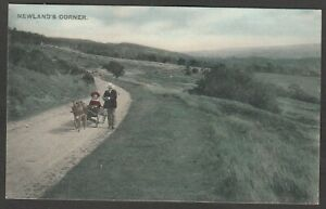 Postcard Newland's Corner nr Guildford Surrey early view by LLoyd of Albury