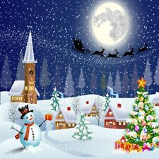 Winter Snow Christmas Backdrop 6x6 Digital Photography Background Studio Canvas