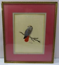 Framed Ink & Watercolour Drawing of a Bird with Real Feathers by Caroline Hunt