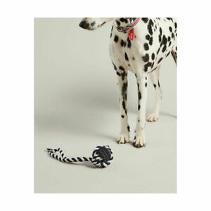 Joules Rubber and Rope Dog Toy - Fetch Tug Dog Toys