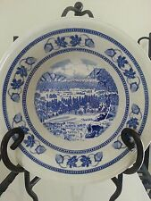 CHARMING Blue & White Bowl Fine English Ironstone American Victorian Collection