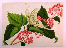 Cinese ricepapers Farfalla su un ramo fiori W / col c1850