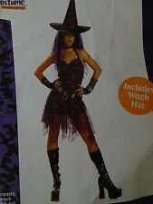 Goth Rockin' Witch Costume Sexy Women's Hallwoeen No Hat or Gloves Large #1354