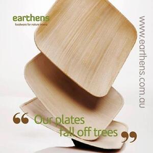 100 - Square Palm Leaf Plates Biodegradable, Compostable AKA Bamboo Plates