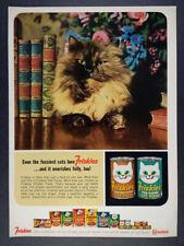 1964 Friskies Cat Food long hair cat photo vintage print Ad