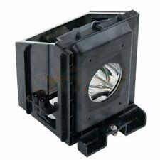 TV Lamp Module for SAMSUNG SP42L6HRX/XAX (Type1)