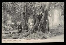 PALERMO giardino garibaldi