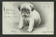 Vintage Postcard- I Guess Nobody Loves Me Puppy Illustration, 1909, Posted