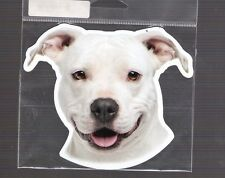 American Staffordshire 4 inch face magnet for anything metal