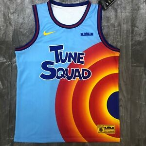Tune Squad Lebron James jersey